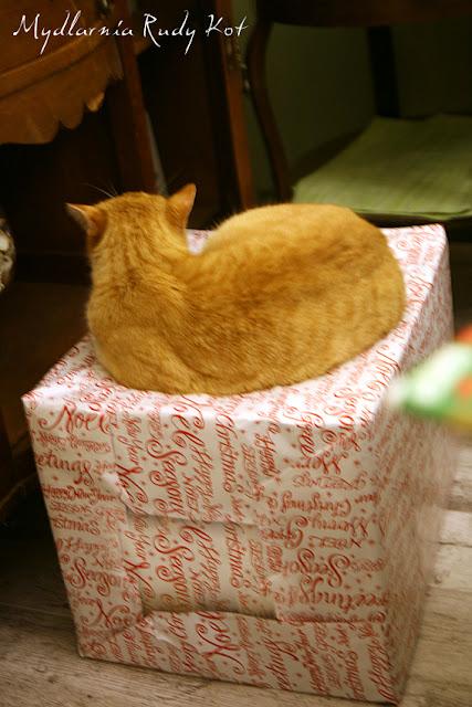 W Mydlarni Rudy Kot kupisz najlepsze, antyalergiczne mydła. Mydła wykonujemy ręcznie w rodzinnej mydlarni. Wszystkie mydła posiadają certyfikaty bezpieczeństwa i badania.