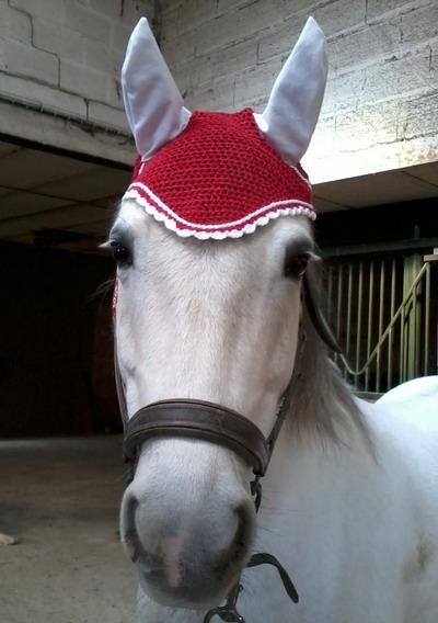 bonnet pour chevaux long