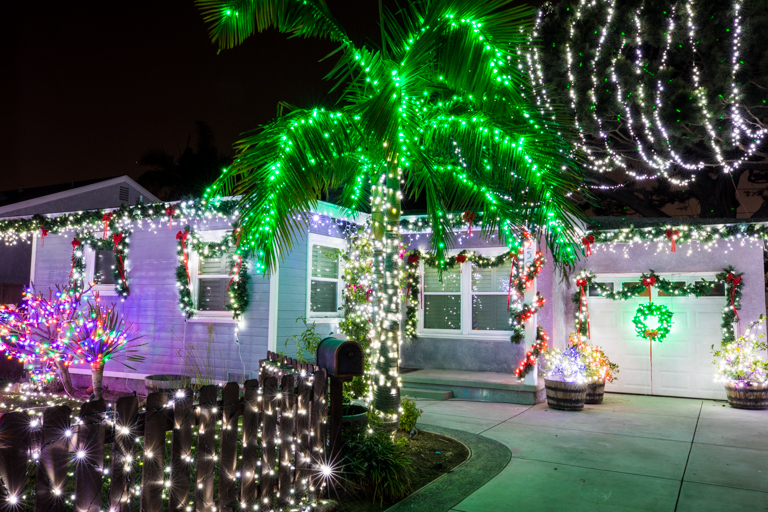 T Made The Excellent Suggestion A Few Years Ago That Green LEDs Would Look  Better. I Completely Agree! I Love How The Palm Trees Turn Out Each Year.