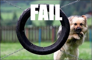 dumb dog jumping through tyre fail