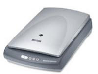 Epson Perfection 2400 Photo Driver Download - Windows, Mac