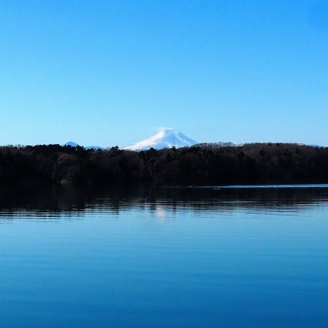 多摩湖 村山下ダム 富士山