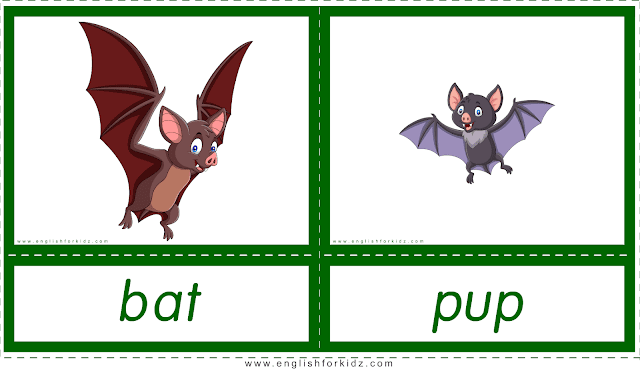 Animals and their babies -- bat - pup -- printable flashcards