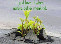Nature defies mankind, but is valid always