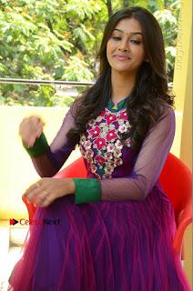 Actress Pooja Jhaveri Latest Stills in Purple Salwar Kameezt at Dwaraka Success Meet  0225.JPG