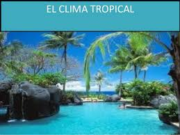 http://es.wikipedia.org/wiki/Clima_tropical
