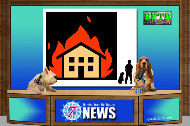 BFTB NETWoof News set with house fire dog rescue story