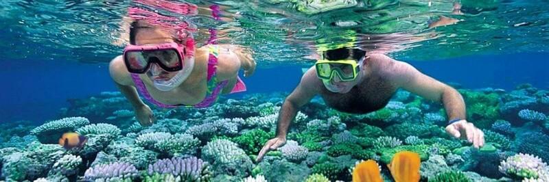Tham gia và tận hưởng cảm giác khám phá một đại dương tuyệt đẹp