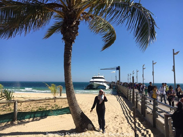 premium-beautiful-agent-tanglooma-island-australia