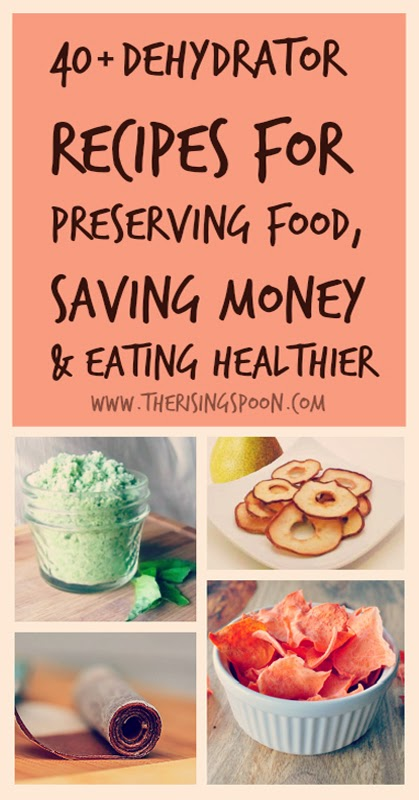40+ Dehydrator Recipes For Preserving Food, Saving Money & Eating Healthier   www.therisingspoon.com