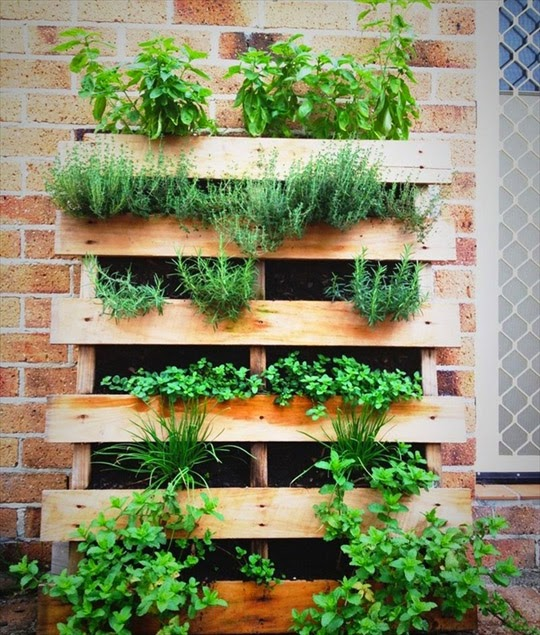 pallet gardening upcycle