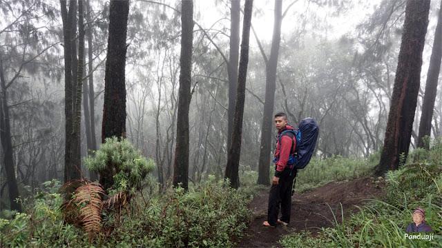 Turun ke Padang Savana yang memiliki Sumber Mata Air