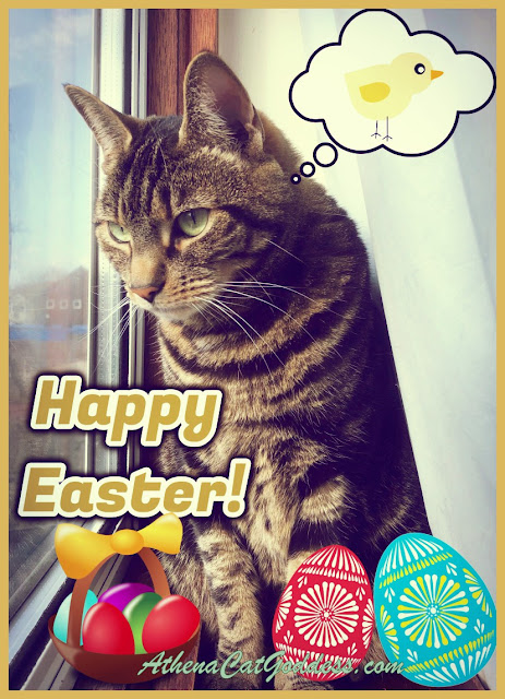 Easter Caturday Art