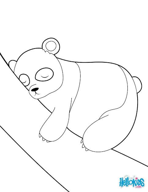 Sleeping Panda Funny Panda