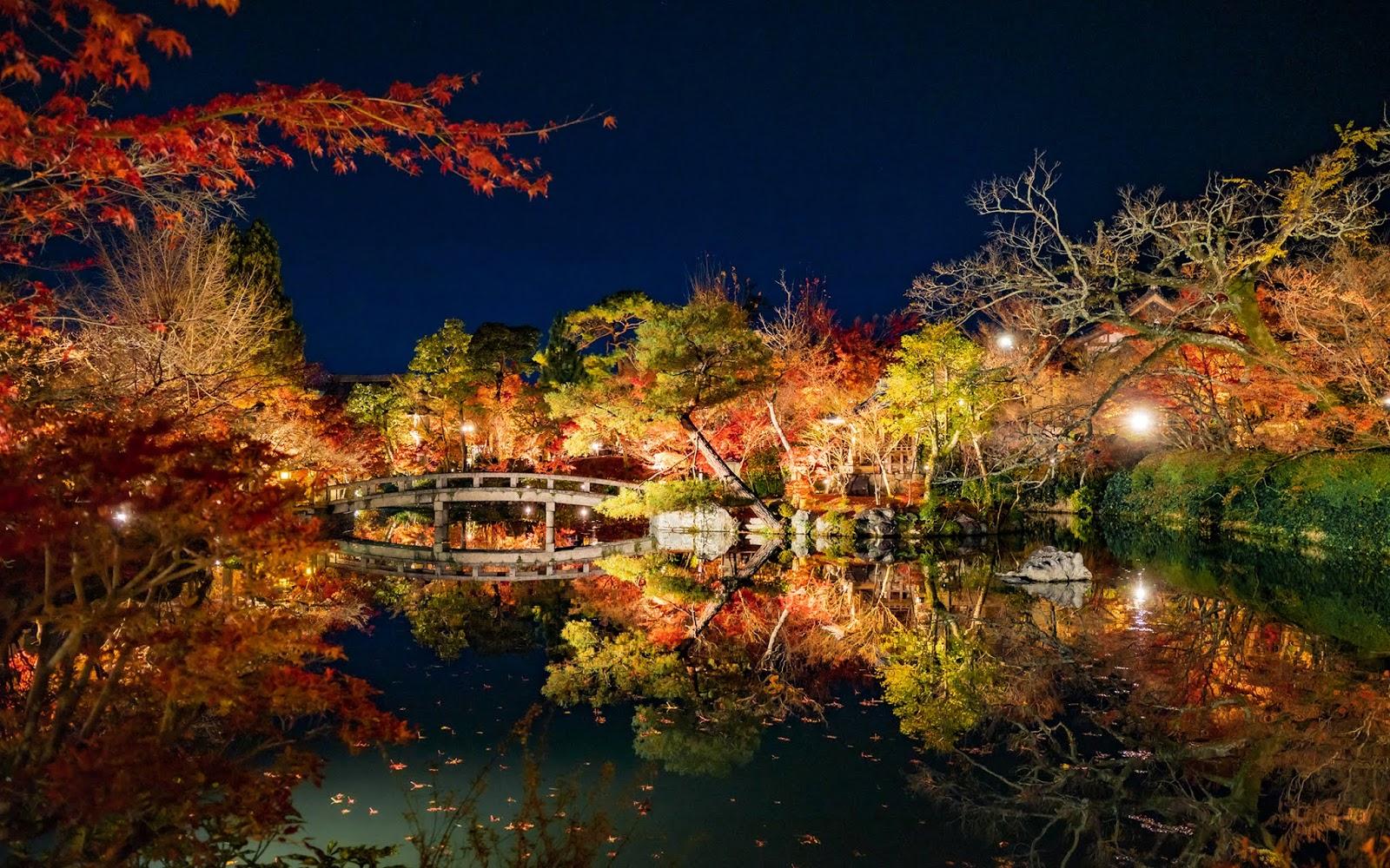 默拍京都:永觀堂的夜間賞楓