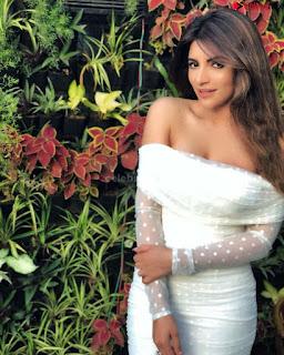 Shama Sikandar Beautiful Stunning Deep neck Gowns Bikini Inners 010.jpg