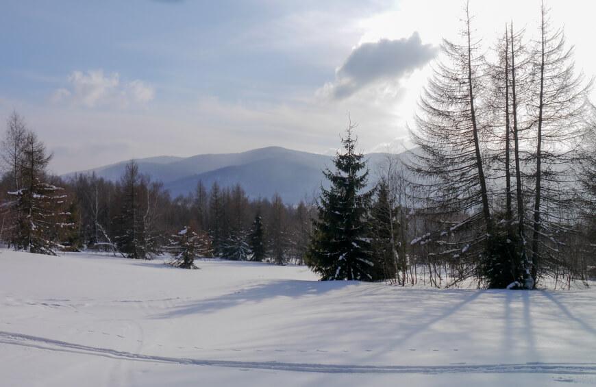 szlak na Tarnicę