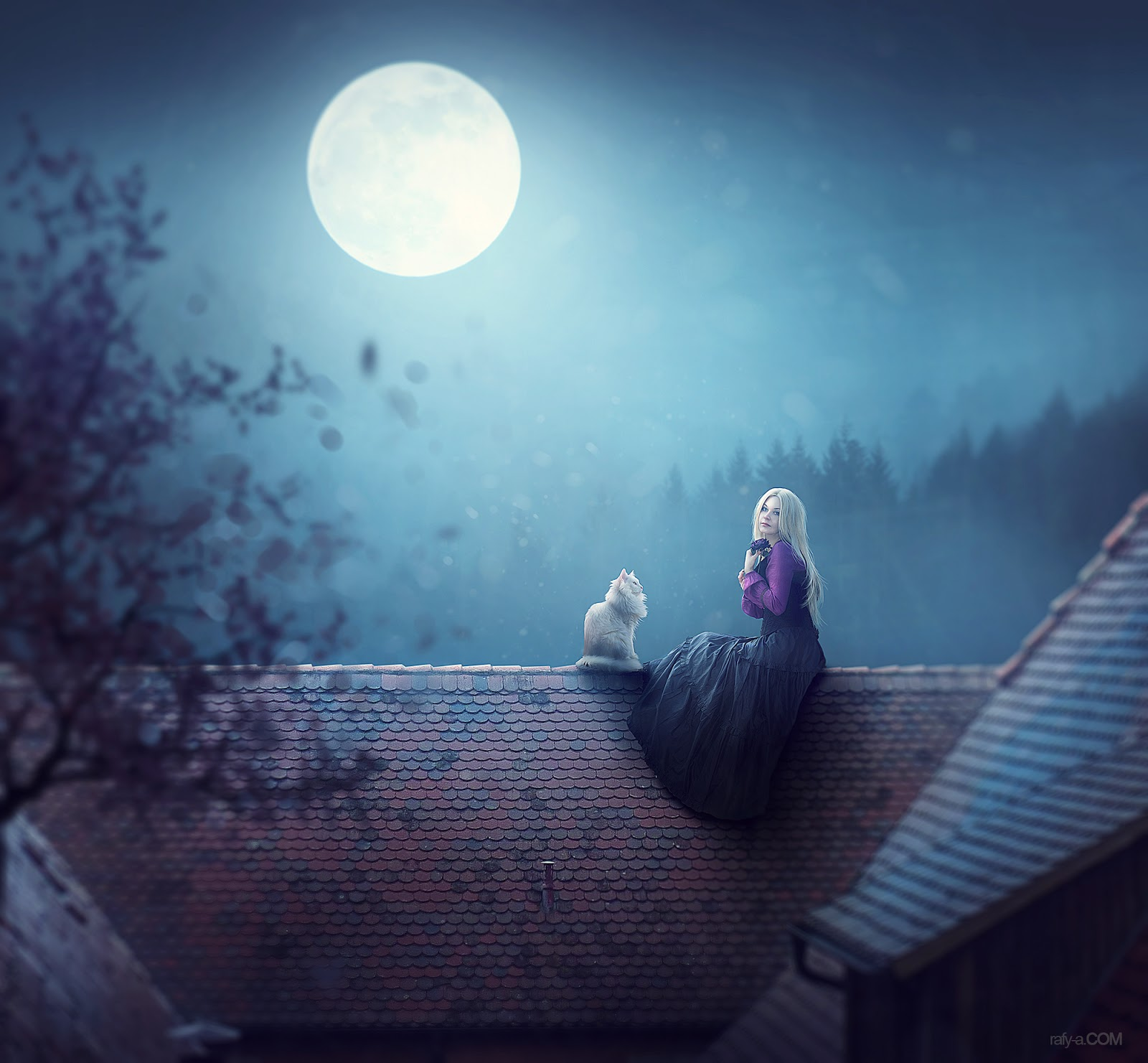 Learn How To Make Photo Manipulation Night Moonlight Scene Effects In  Photoshop Cc 2017