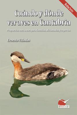Cuándo y dónde ver aves en Cantabria