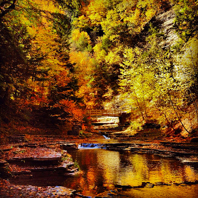 fall+scenery - Lotus Stack Organic Maxi Worn Short or Long