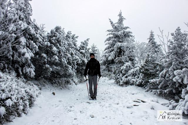Szlak na Jested Liberec