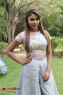 Actress Amala Paul Pictures at Amma Kanakku Press Meet  0006.jpg