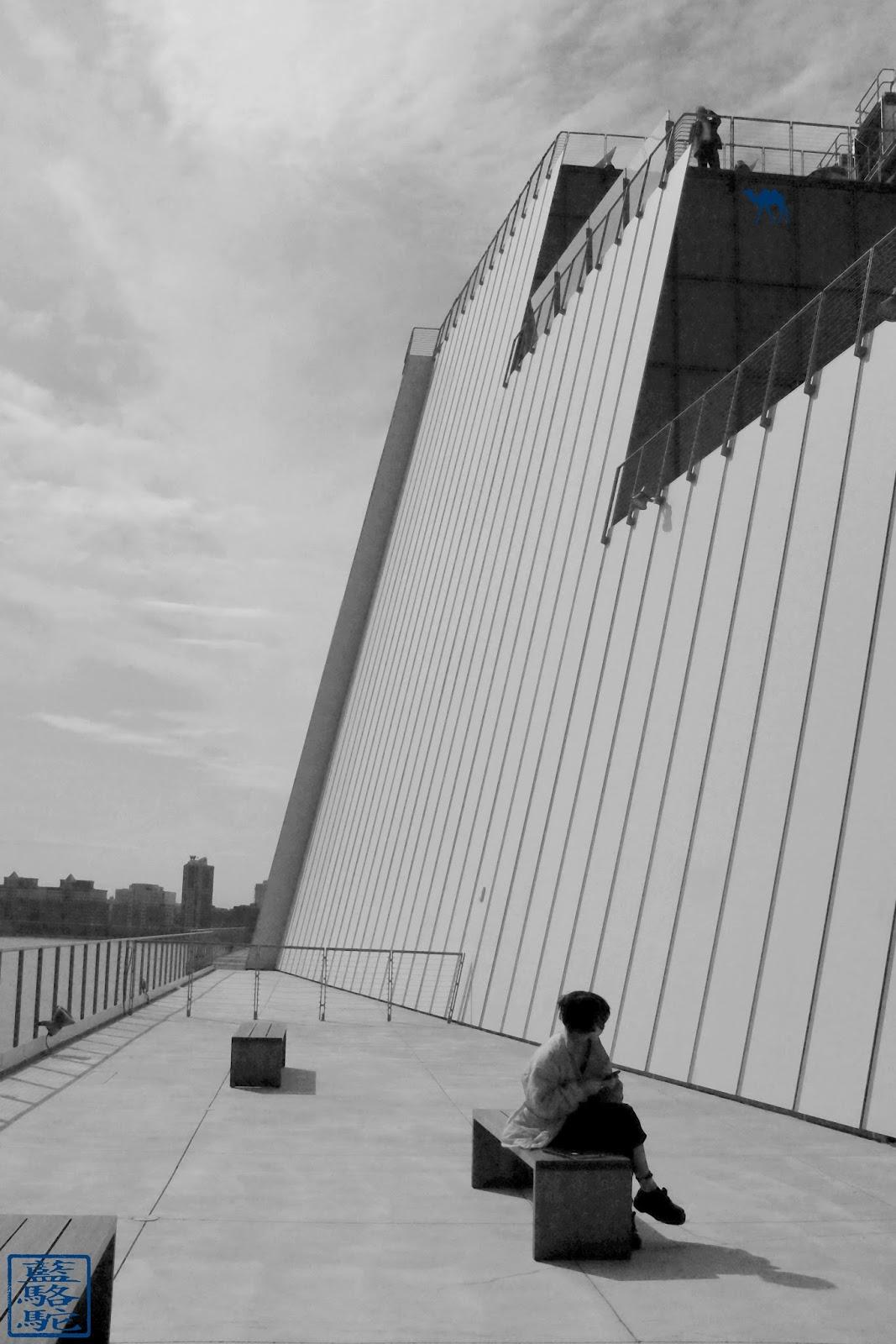 Le Chameau Bleu - Voyage à New York - Musée Whitney