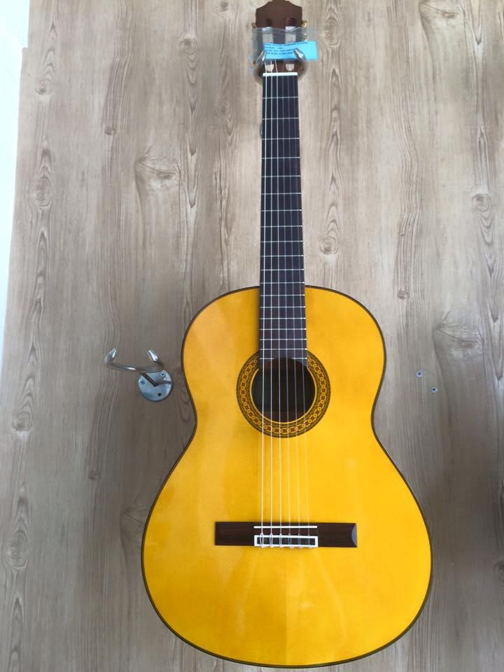 dan Guitar Yamaha C315