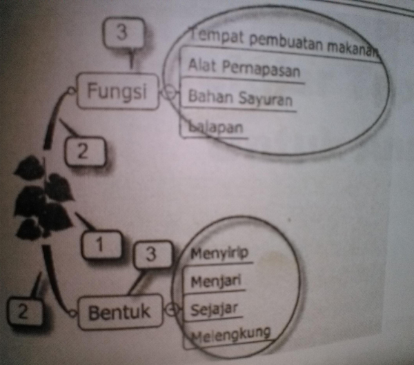 aplikasi peta pikiran