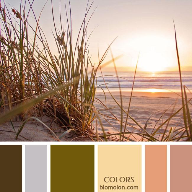variedad_en_color_paletas_de_colores_70
