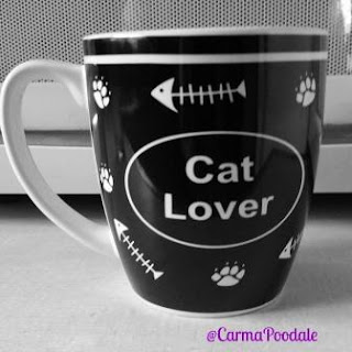 Cup that says Cat Lover