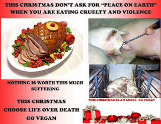 Say no to cruelty and go Vegan this Holiday!