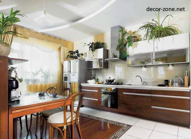 plants shelves in the interior, kitchen decorating ideas