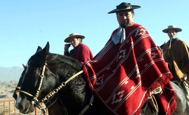 Horses and Gauchos