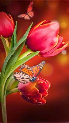 Images of flowers download pagalworld