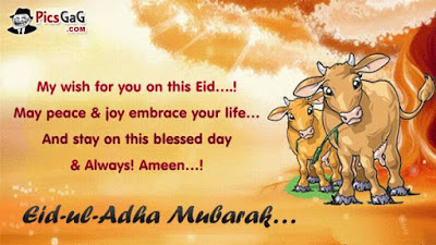 bakrid images wallpapers 2016 wishes