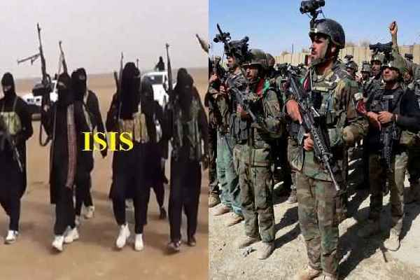 afghanistan-news-20-isis-and-talibani-terrorist-killed-in-operation