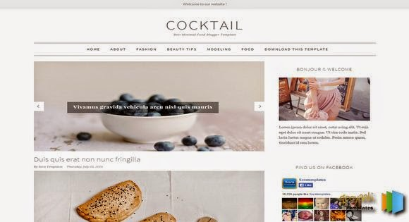 cocktail blogger template