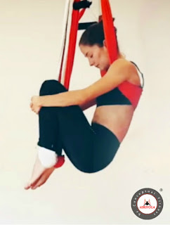 aero-yoga-te-gustaria-despegar-nivel-laboral-formacion-teacher-training-profesores-instructor-maestros-cursos-clases-escuelas-negocios-tendencias-deporte-fitness-aerial-air-aerien-swing-columpio-trapeze-fly-flying-gravity