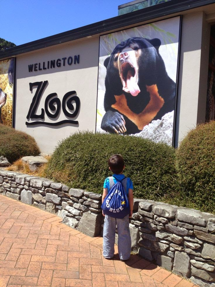 10 of the World's Most Famous Zoos - Wellington Zoo, North Island, New Zealand
