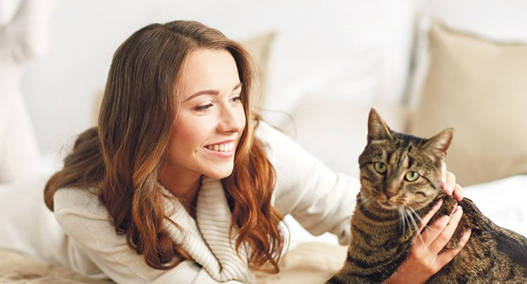 جرثومة القطط.. أعراضها وسبل معالجتها