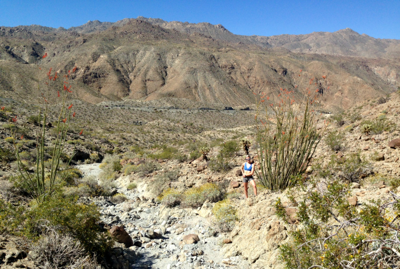 Henderson Loop Trail, Palm Springs California, Palm Desert California, Palm Desert Hikes