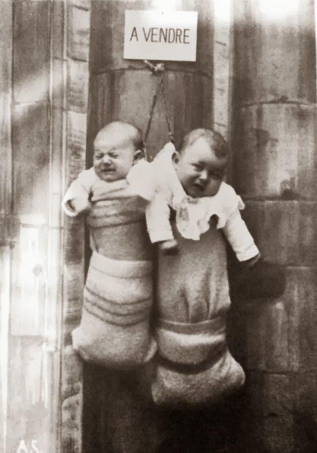 192 Vendre 20 Adorable And Hilarious Quot Babies For Sale