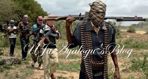 Boko Haram Fighters Are Usually Paid $3,000 Daily - Sidi Ali Mohammed