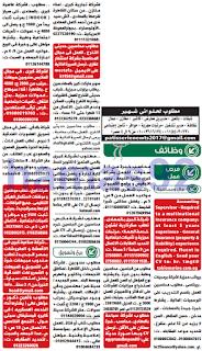 وظائف جريدة الوسيط القاهرة الجمعة 17-02-2017