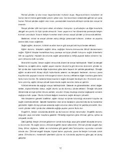 Sağlık Bilgisi ve Trafik Kültürü Ders Kitabı Cevapları Ada Yayınları Sayfa 12