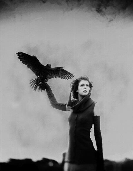 """""""Venus en Sagitario: El Himno a las Mujeres Libres"""". Por Margit Glassel."""