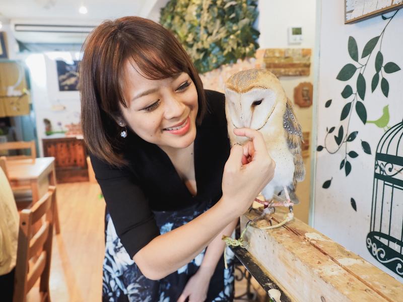 Japan! Osaka: Lucky Owl Cafe