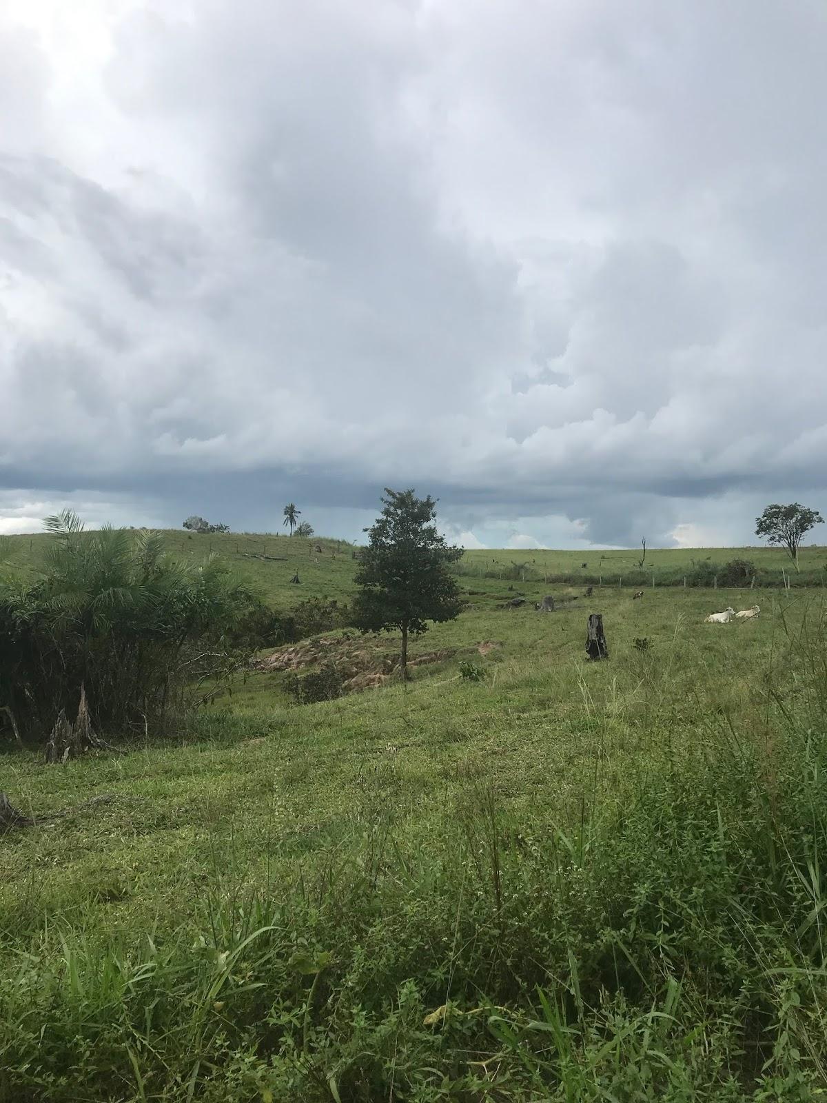 Colorado do Oeste - RO | Zona Rural