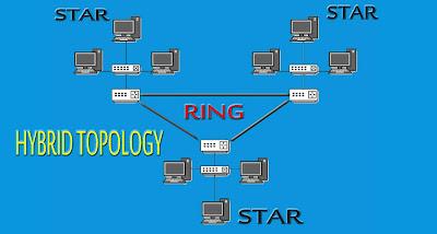 Hybrid Topology Network